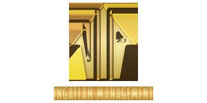 VIP Ingatlan Management